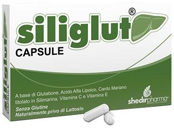 offerta Shedir Pharma  Unipersonale Siliglut 20 Capsule