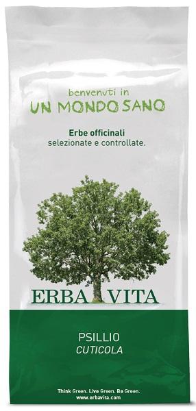 Erba Vita Group Psillio Cuticola P 100g