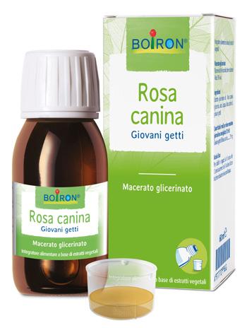 Boiron Rosa Canina Macerato Glicerico 60 Ml Int