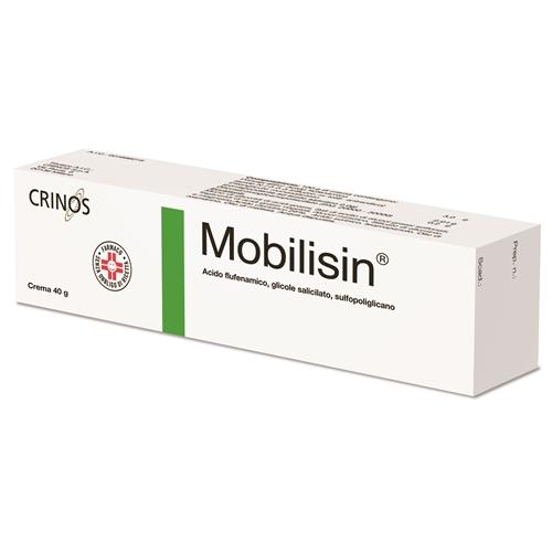 Mobilisin 40 G Crema 1 Tubo