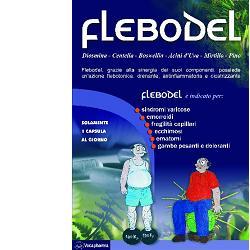 Vecapharma Flebodel 30 Capsule