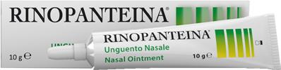 D.m.g. Italia Rinopanteina Unguento Nasale 10 G