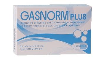Laerbium Pharma Gasnorm Plus 36 Capsule
