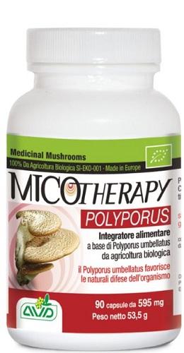 A.v.d. Reform Micotherapy Polyporus 90 Capsule