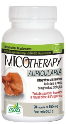 A.v.d. Reform Micotherapy Auricularia 90 Capsule