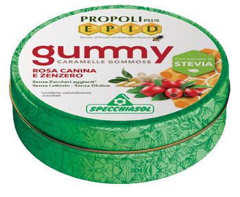 Specchiasol Epid Gommose Zenzero 40 G
