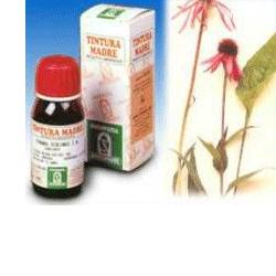 Specchiasol Echinacea 59 50ml Tm