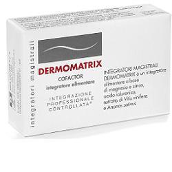 Cosmetici Magistrali Dermomatrix Integratore Magistrale 20cps